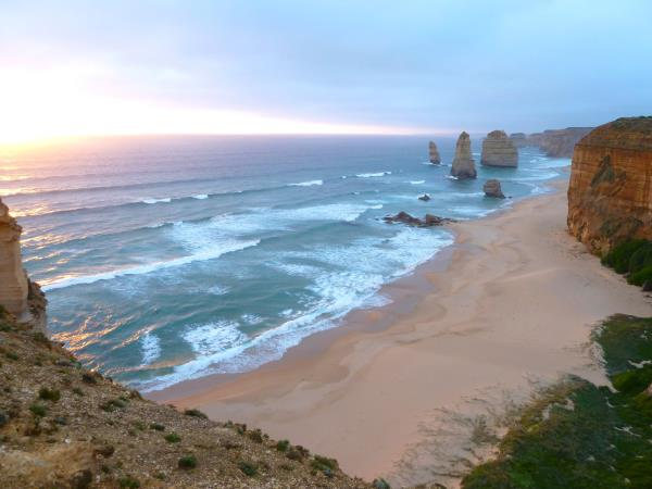 Great Ocean Road wildlife tours, Australia
