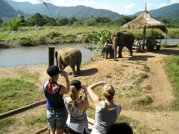 Life coaching holiday in Northern Thailand