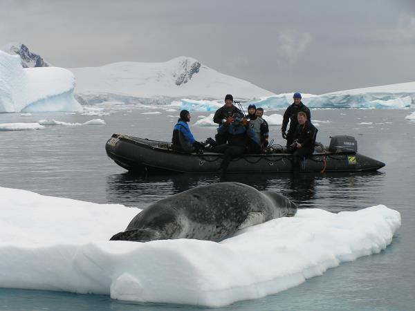 Antarctic diving expedition