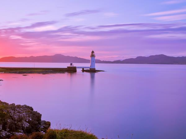 Wildlife holiday in the Isle of Mull, Scotland
