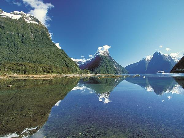 Nature tour in New Zealand