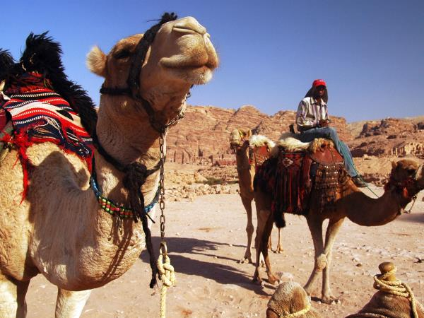 Jordan cultural tour, Petra and Wadi Rum