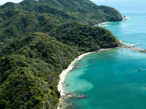 Costa Rica luxury wildlife tour