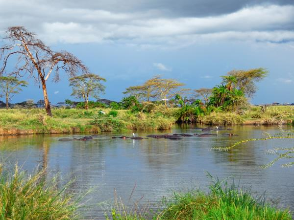 Tanzania expedition in the footsteps of Livingstone