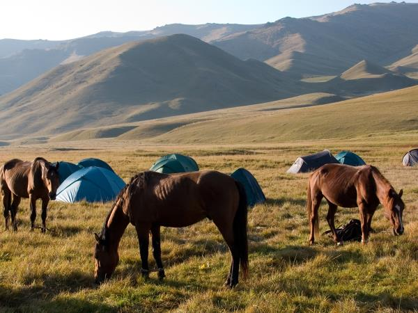 Riding holiday in Kyrgyzstan