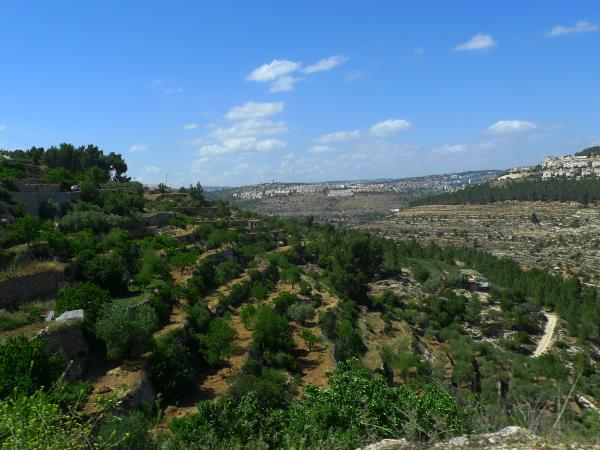 Palestine walking holiday
