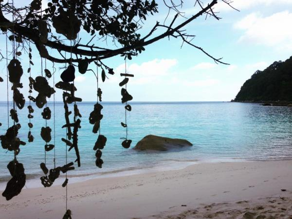 Sea Turtle conservation on Perhentian Islands, Malaysia