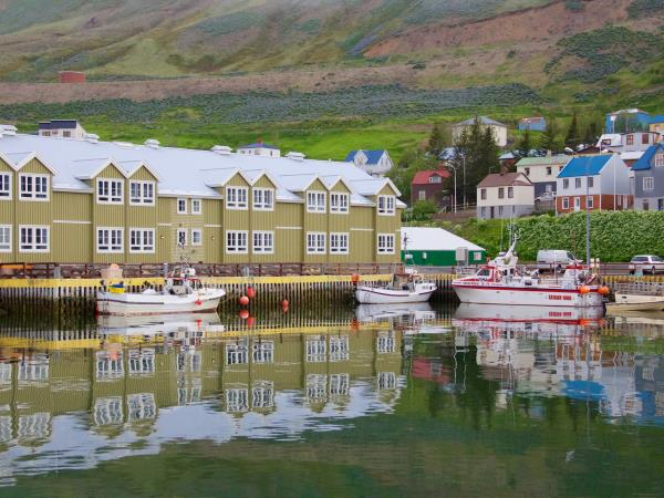 Iceland self drive holiday, whales watching & riding
