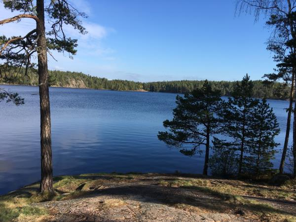 Sweden self guided cycling holiday, Stockholm countryside