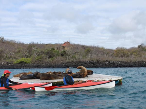 Ecuador and the Galapagos Islands activity holiday