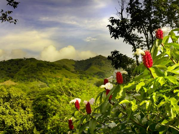 Costa Rica holiday, natural highlights