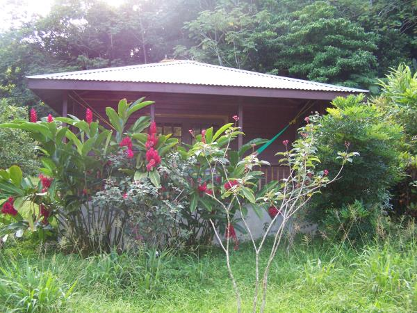 Dominica ecolodge holiday