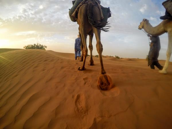 Sahara desert & Atlas mountains adventure holiday, Morocco