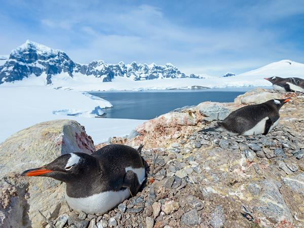 Crossing the Antarctic Circle expedition cruise