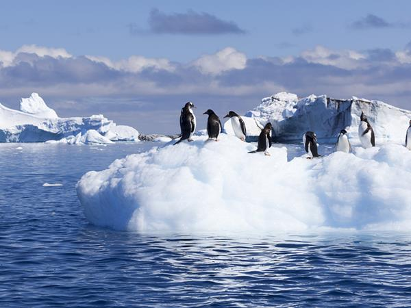 antarctic expeditions crossing circle