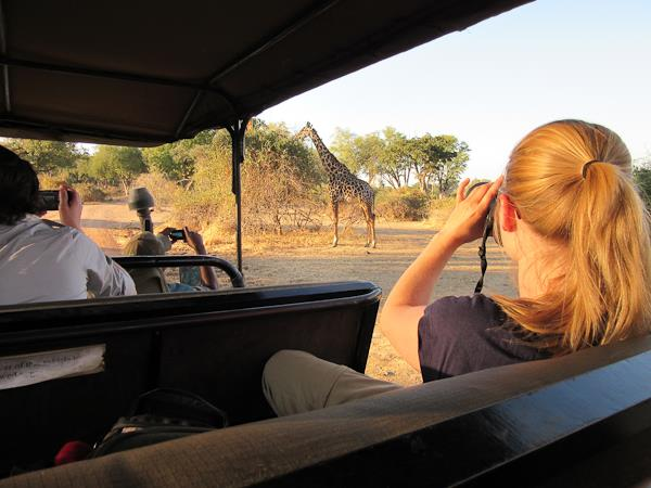 Malawi, Zambia and Zimbabwe expedition safari