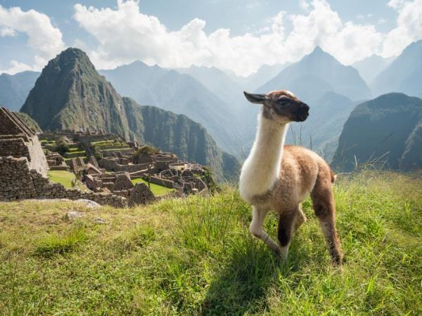Peru vacation, tailor made tour