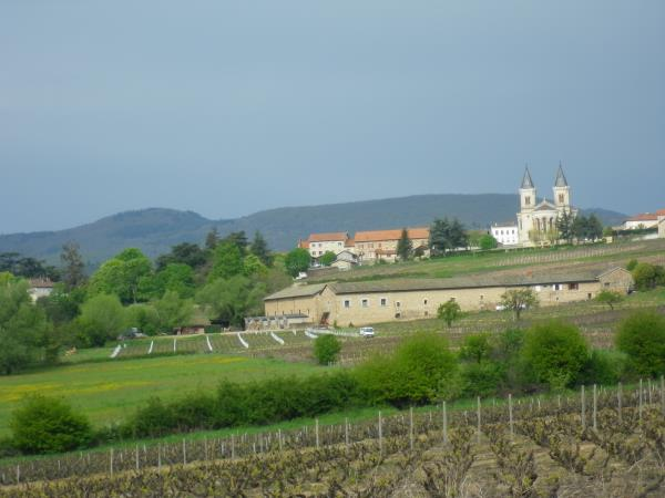Beaujolais self guided cycling holiday, France