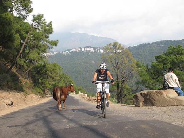 India hill stations cycling holiday