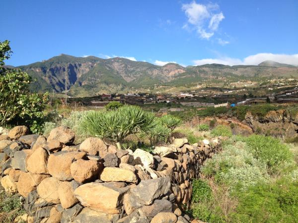Tenerife dance retreat and Shamanic healing holiday