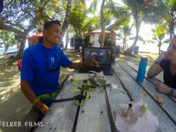 Freediving course & Lionfish hunting in Belize