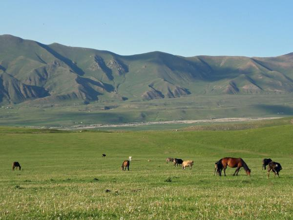 Kyrgyzstan holiday, tailor made adventure