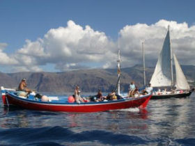 Whale & dolphin watching in La Gomera