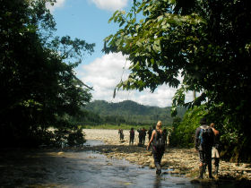 volunteers on a jungle trek