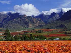 Cape winelands self drive holiday, South Africa. Travel like a local