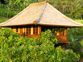 Bali eco bungalows in Indonesia