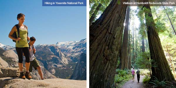 Hikers at Yosemite and walking through Humboldt RedwoodState Park