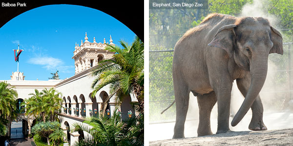 Balboa Park and San Diego Zoo