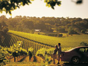 Couple at vineyard, South Australia. Photo by South Australia Tourist Board
