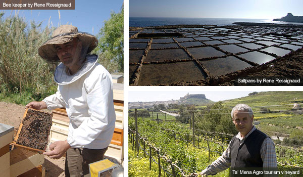 Bee keeper, saltpans and vineyard, Gozo. Photos by Rene Rossignaud and Nick Haslam