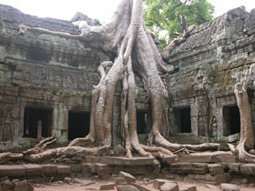 Cambodia tour, tailor made