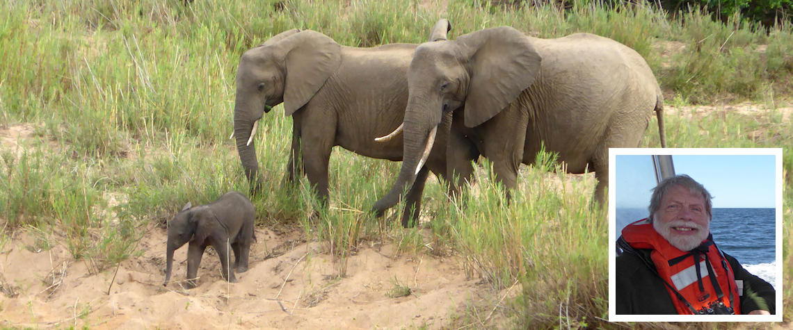 Elephants in Kruger and (inset) Alan Thomas