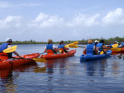 Kayaking, Cayman Islands. Photo by Cayman Islands Tourist Board
