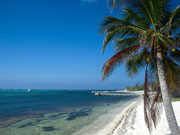 Beach on Little Cayman, Cayman Islands. Photo by Cayman Islands Tourist Board