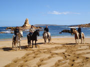 Horses on a beach in Menorca. Photo by Audax Hotels