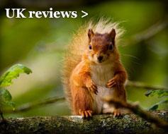 UK reviews