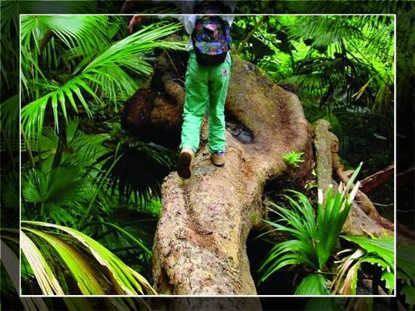 Costa Rica family adventure holiday