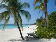 Seven Mile Beach, Cayman Islands. Photo by Cayman Islands Tourist Board