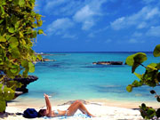 Smiths Cove, Cayman Islands. Photo by Cayman Islands Tourist Board
