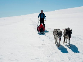 Finnmark ski touring holiday in Norway