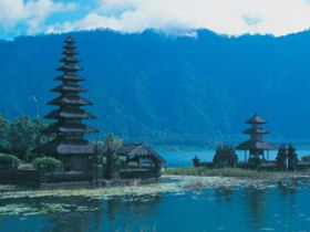 Indonesia holidays, tailor made, Orangutans & Komodo dragons