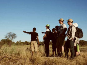 Botswana family adventure holiday