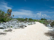 The Bluff, Cayman Brac. Photo by Cayman Islands Tourist Board