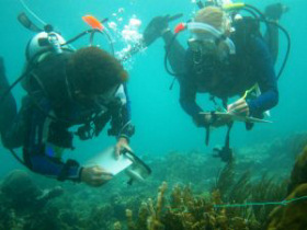 Marine conservation project