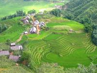 Vietnam trek and homestay