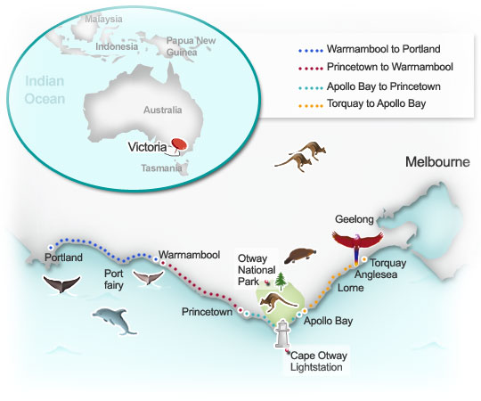 Routes of interest around the Great Ocean Road. Illustration by Lisa Joanes